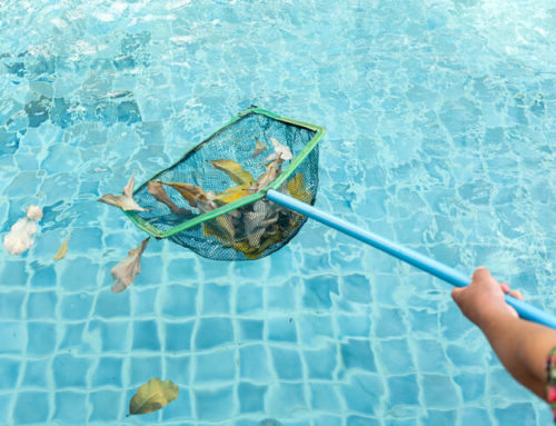 Don't Let Autumn Fall in Your Pool!